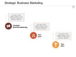 Strategic Business Marketing Ppt Powerpoint Presentation Gallery Show Cpb