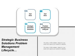 Strategic Business Solutions Problem Management Lifecycle Requirements Management Cpb