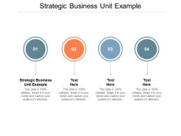 Strategic Business Unit Example Ppt Powerpoint Presentation Summary Graphics Cpb