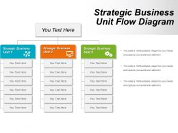 Strategic Business Unit Flow Diagram Powerpoint Ideas