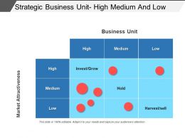 Strategic Business Unit High Medium And Low Powerpoint Images