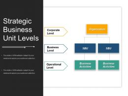 Strategic Business Unit Levels Powerpoint Presentation Examples