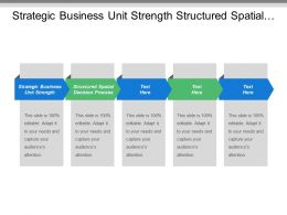 Strategic Business Unit Strength Structured Spatial Decision Process