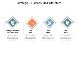 Strategic Business Unit Structure Ppt Powerpoint Presentation Inspiration Slide Download Cpb