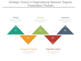 Strategic Choice In Organizational Behavior Diagram Presentation Portfolio