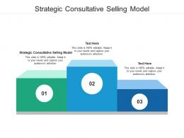 Strategic Consultative Selling Model Ppt Powerpoint Presentation Show Example Cpb