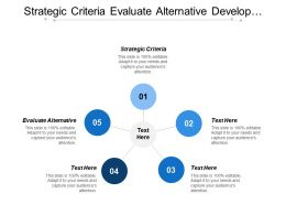 Strategic Criteria Evaluate Alternative Develop Communication Plan Marketing Activity