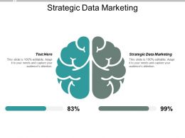 Strategic Data Marketing Ppt Powerpoint Presentation Layouts Guide Cpb