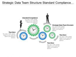Strategic Data Team Structure Standard Compliance Seo Shared Services
