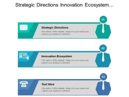 Strategic Directions Innovation Ecosystem Innovation Process Social Framework