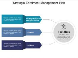 Strategic Enrolment Management Plan Ppt Powerpoint Presentation File Cpb