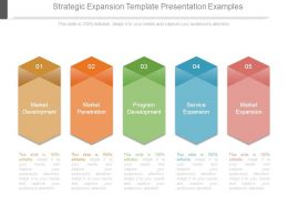 Strategic Expansion Template Presentation Examples