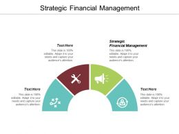 Strategic Financial Management Ppt Powerpoint Presentation Infographic Template Graphics Cpb
