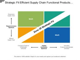 Strategic Fit Efficient Supply Chain Functional Products Innovative