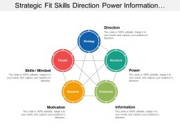 Strategic Fit Skills Direction Power Information Motivation