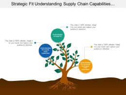 Strategic Fit Understanding Supply Chain Capabilities Consumer Uncertainty