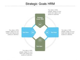 Strategic Goals HRM Ppt Powerpoint Presentation Summary Download Cpb