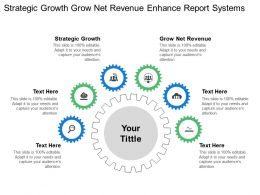 Strategic Growth Grow Net Revenue Enhance Report Systems