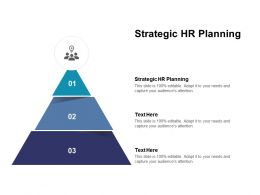 Strategic HR Planning Ppt Powerpoint Presentation Inspiration Guidelines Cpb