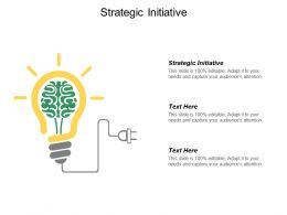 Strategic Initiative Ppt Powerpoint Presentation Gallery Backgrounds Cpb