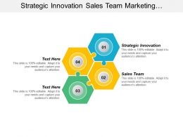 Strategic Innovation Sales Team Marketing Campaign Employee Satisfaction