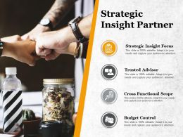 Strategic Insight Partner Cross Functional Scope