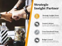 Strategic Insight Partner Cross Functional Scope