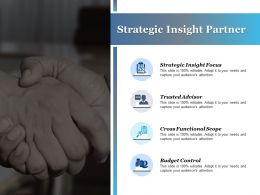 Strategic Insight Partner Cross Functional Scope Budget Control