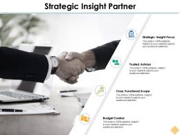 Strategic Insight Partner Ppt Inspiration Outline