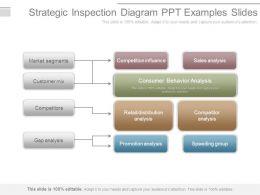 strategic_inspection_diagram_ppt_examples_slides_Slide01
