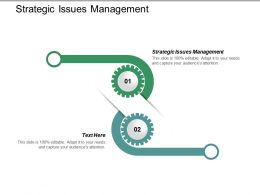 Strategic Issues Management Ppt Powerpoint Presentation Gallery Example File Cpb