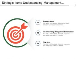 Strategic Items Understanding Management Expectations Current State Collecting Data