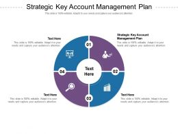 Strategic Key Account Management Plan Ppt Powerpoint Presentation Pictures Slides Cpb