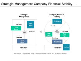 Strategic Management Company Financial Stability Value Measurement Finance Management Cpb