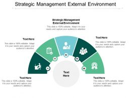 Strategic Management External Environment Ppt Powerpoint Presentation Ideas Cpb