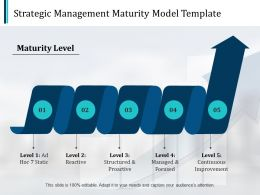 Strategic Management Maturity Model Marketing Ppt Pictures Design Templates