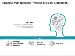 Strategic Management Process Mission Statement Corporate Level Strategy