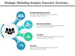 Strategic Marketing Analysis Executive Summary Option Strategy Business Appraisal Cpb