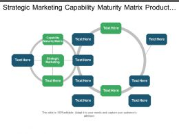 Strategic Marketing Capability Maturity Matrix Product Marketing Strategic Management Cpb
