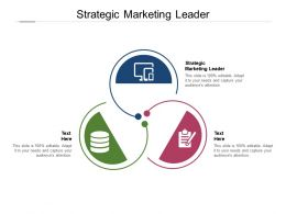 Strategic Marketing Leader Ppt Powerpoint Presentation Outline Samples Cpb