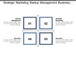 Strategic Marketing Startup Management Business Cycle Enterprise Resource Planning