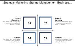 strategic_marketing_startup_management_business_cycle_enterprise_resource_planning_Slide01