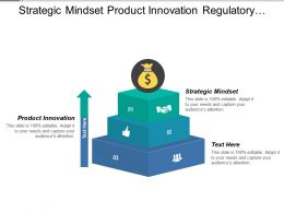 Strategic Mindset Product Innovation Regulatory Knowledge Collaboration Relationship