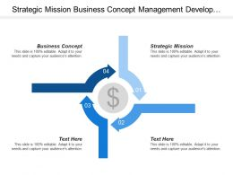 Strategic Mission Business Concept Management Development Resources Management