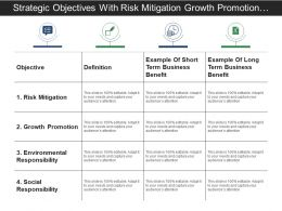 Strategic Objectives With Risk Mitigation Growth Promotion And