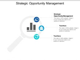 Strategic Opportunity Management Ppt Powerpoint Presentation Inspiration Layouts Cpb