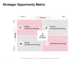 Strategic Opportunity Matrix Development Strategy Ppt Powerpoint Presentation Strategy