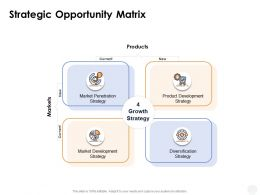 Strategic Opportunity Matrix Diversification Ppt Powerpoint Presentation Ideas Aids