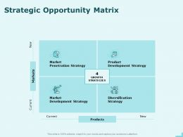 Strategic Opportunity Matrix Marketing Ppt Powerpoint Presentation Infographic Template Samples