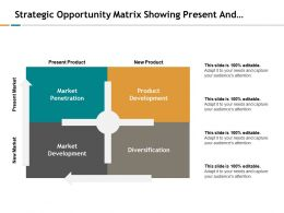 Strategic Opportunity Matrix Showing Present And New Market